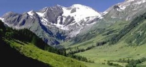 hegyvidek
