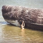 man hanging on to whale